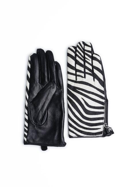 Maya Zebra
