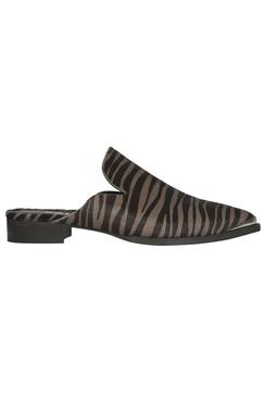 Minoo Zebra